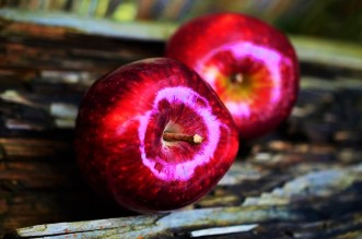 apple-red-apple-fruit-red-38240-large-1