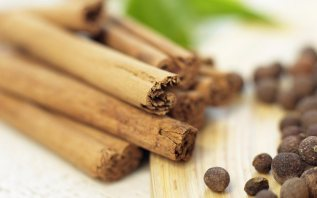 Cinnamon and Cloves