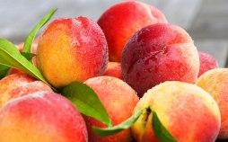 Sweet Juicy Peach