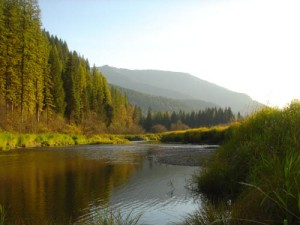 Bull River in Montana