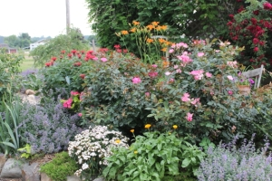 Banister Garden at The Garden Gate Farm