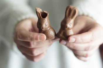 Woman hands holding two chocolate Easter rabbits, one with a bite