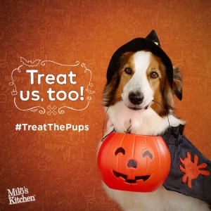 Pet Trick or Treats / Milk-Bone & Milo's Kitchen