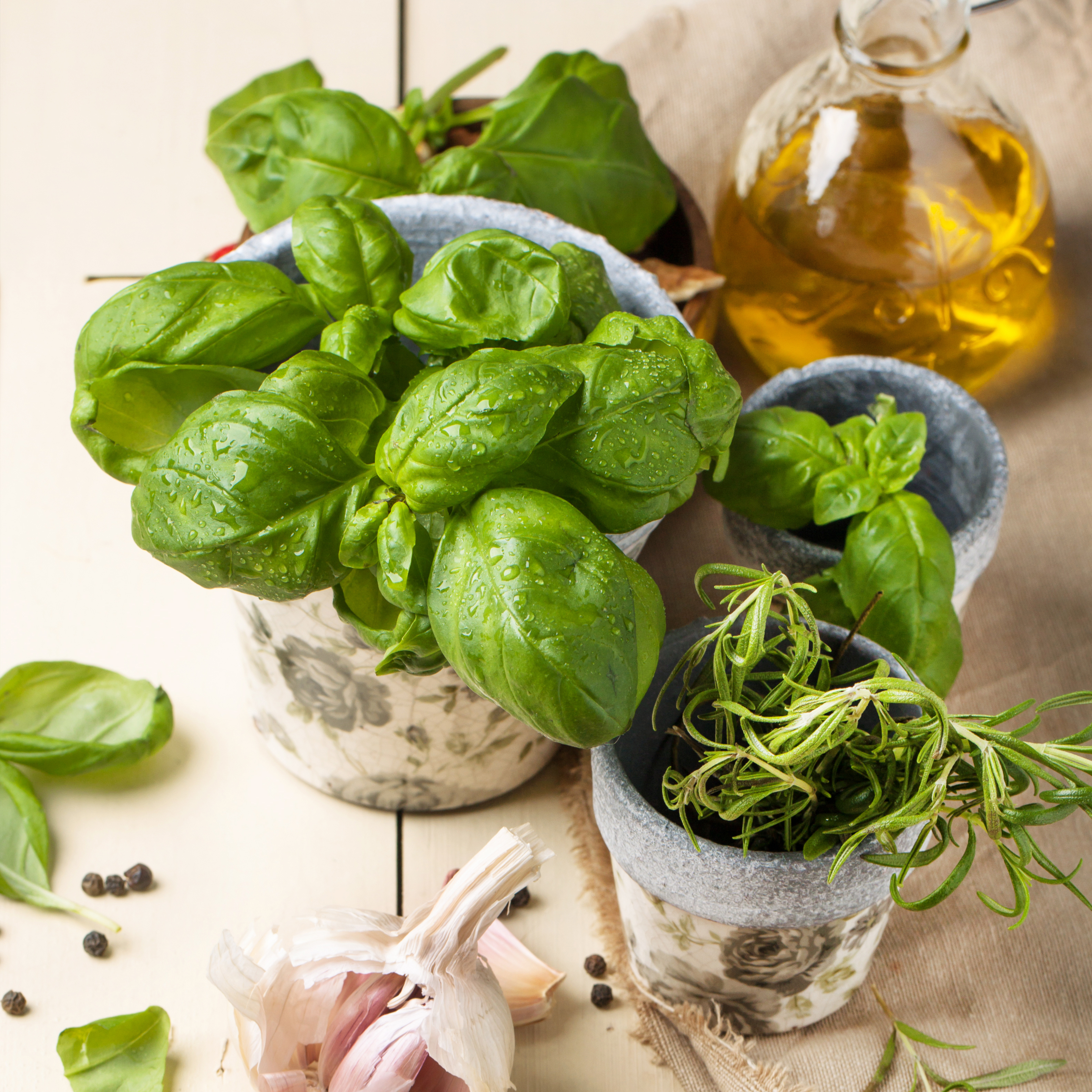 Basil, nuts and olive oil